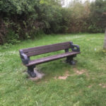 Bench at Waterleaze between picnic benches